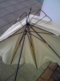 すごい風でした〜(*_*)